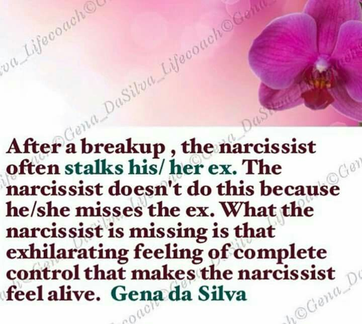moving on life after dating a narcissist Anyone dating or in a  that just goes to show that there can definitely be a life, post narcissist when  how does an male narcissist feel after you.