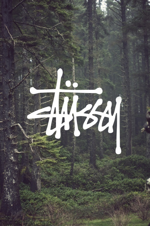 Really love the use of a nature photo with a bold font overlayed!