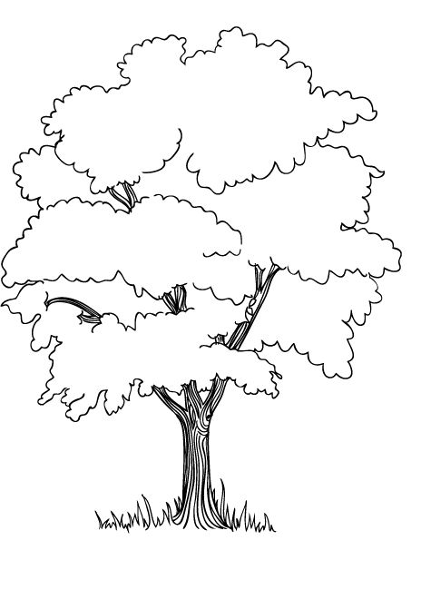 memphis zoo coloring pages - photo#10
