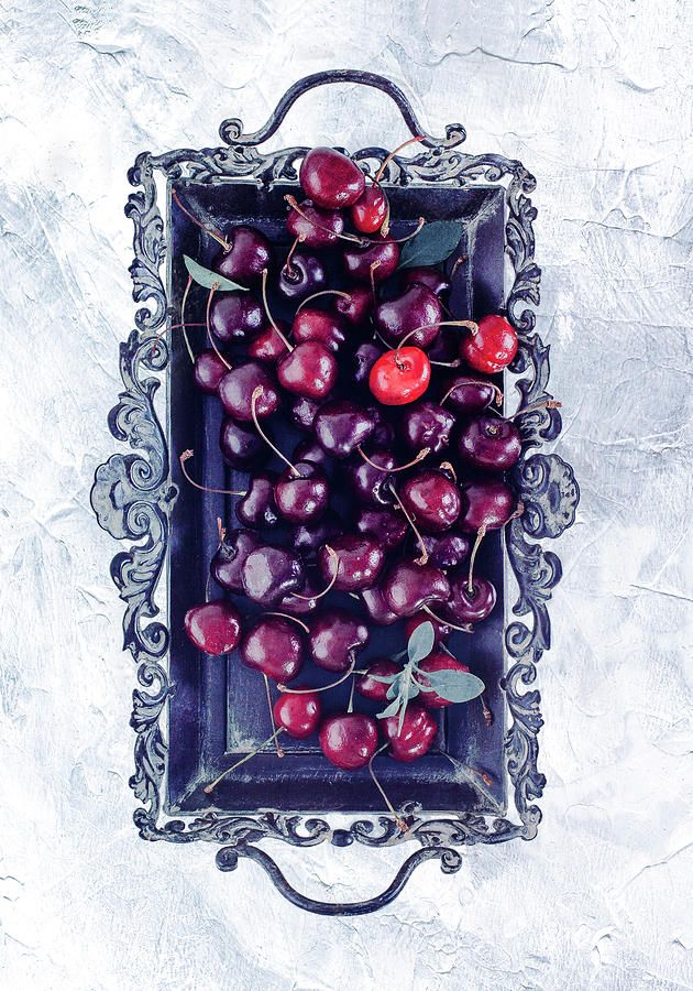 Winter Cherry Photograph by Oksana Ariskina. Red berry on a antique tray on a white marble, stucco, plaster textured background. Available as mugs, posters, greeting cards, phone cases, throw pillows, framed fine art prints, metal, acrylic or canvas prints, shower curtains, duvet covers with my fine art photography online: www.oksana-ariskina.pixels.com #OksanaAriskina