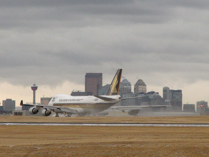 Calgary Airport - where the coyotes run along our plane during takeoff!