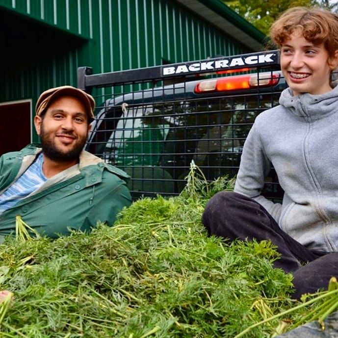 Gardeners At Camphill Village Copake Are Getting Cozy In A Truck Bed Of Carrot Tops These Greens Are On Their Farm Photography Carrot Top Grow Your Own Food