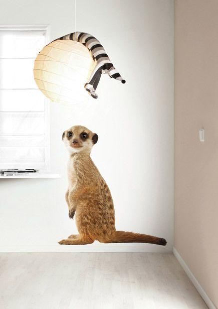 ¿Cuál es tu animal de la Sábana favorito? Nosotros tenemos un favorito: el leopardo pequeñito.  ¿Y tú? ¿Cuál es tu animal de la Sábana favorito? Hoy en el blog toda la historia de estos vinilos tan salvajes: http://elblogdeottoyanna.wordpress.com/2013/07/30/vinilos-infantiles-safari-friends/ #kekAmsterdam #wallsticker #kidsroom
