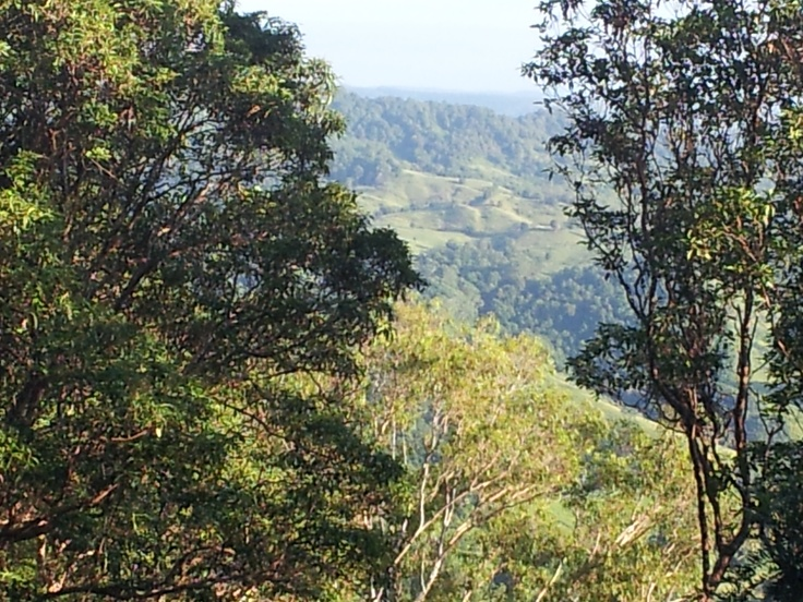 Looking out from Montville across the rainforest to the Sunshine Coast beaches.  The sounds of the mountain birds are amazing.