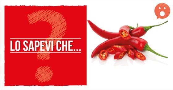 Lo sapevi che il #PEPERONCINO, tra le altre numerose proprietà, funge anche da digestivo?  È una delle spezie più note al mondo, tipica della cucina mediterranea, sudamericana e orientale. Ne esistono numerosissime varietà, dalla più dolce alla più piccante (...)
