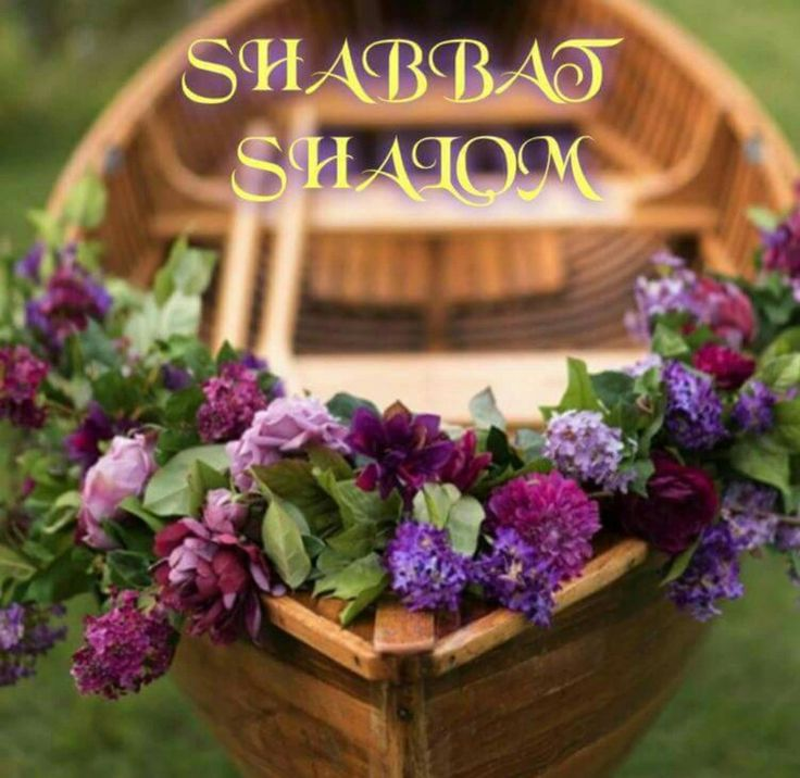 Shabbat Shalom                                                                                                                                                                                 More