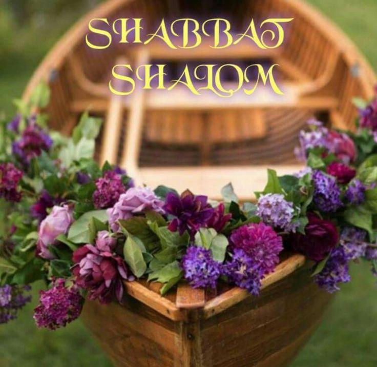 Shabbat Shalom More More