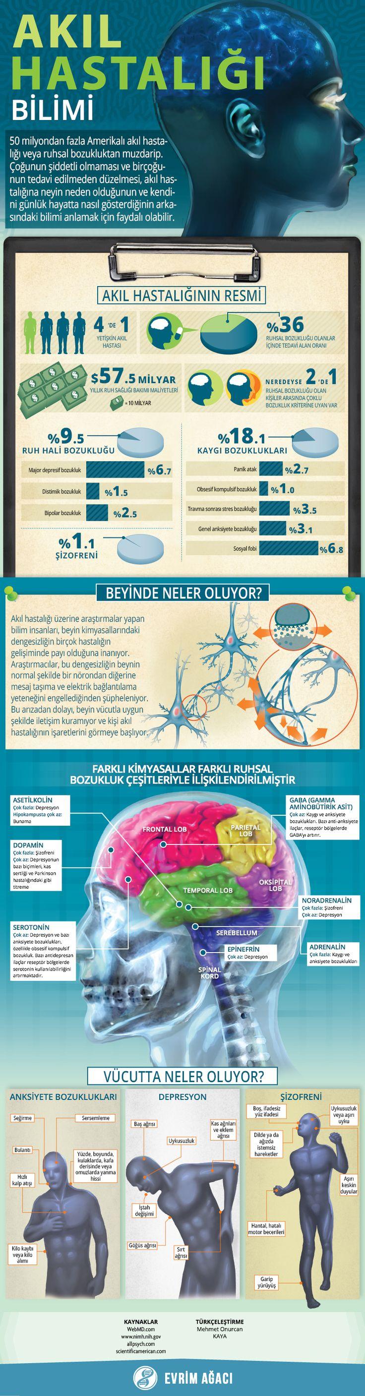 Psikiyatri: Akıl Hastalıklarının Bilimi – Evrim Ağacı