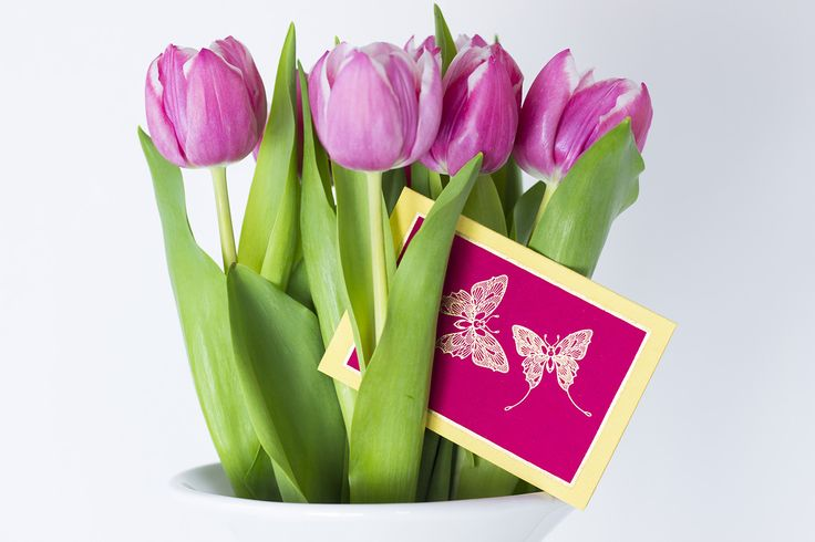 #elvinpaper #elvinshop #handmadepaper #giftideas #sendflowers #message #makesomeonehappy #butterflycard #stylishgifting #beoriginal