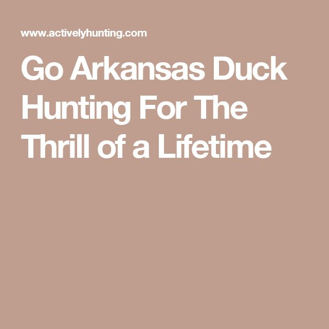 Go Arkansas Duck Hunting For The Thrill of a Lifetime