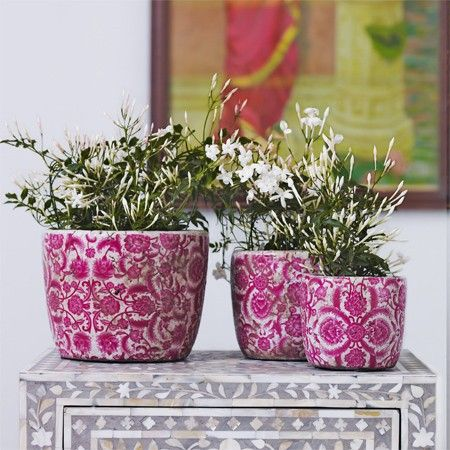 Set of 3 Vintaged Rose Plant Pots - View All Home Decoration - Home Decoration - Home Accessories