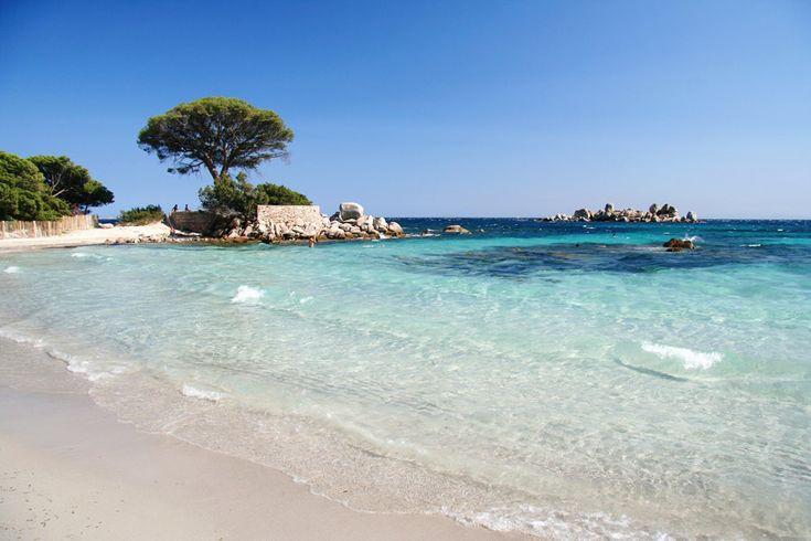 Idyllic Palombaggia Beach in Porto Vecchio, Corsica