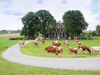 Leiden Farmhouse Rental: Luxury Apartment For 4 To 6 People On A Monumental Farm | HomeAway