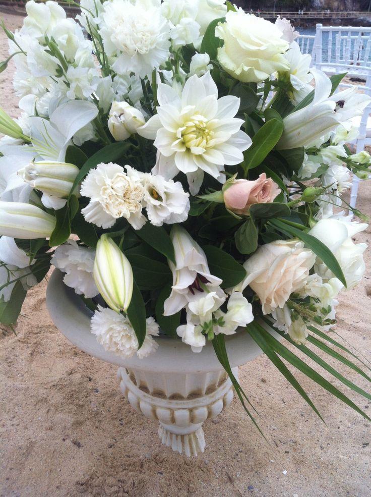 Sophias flowers