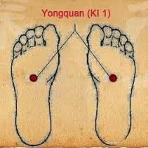 """**The Key to Longevity** ----- In Traditional Chinese Medicine, the kidneys are considered the """"Root of Life"""" and when Chinese Medicine refers to an organ, it's not just the physical organs themselves, but the entire Kidney meridian or energy channel. - #TaiChi #Taijiquan"""