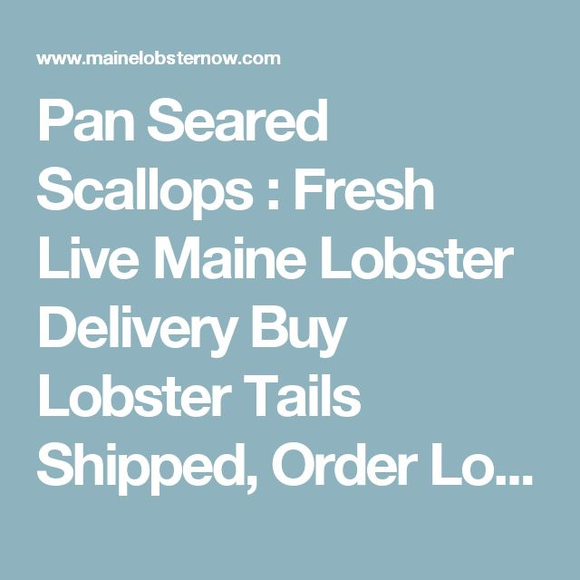 Pan Seared Scallops : Fresh Live Maine Lobster Delivery Buy Lobster Tails Shipped, Order Lobster From Maine
