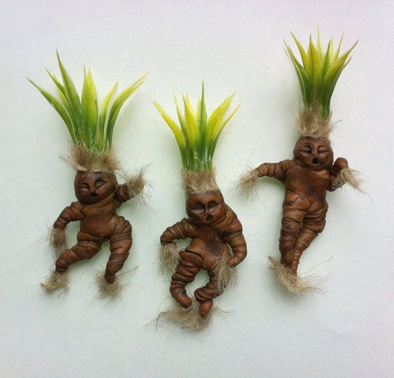 set of mandrake dolls 3 miniature mandragora by. Black Bedroom Furniture Sets. Home Design Ideas
