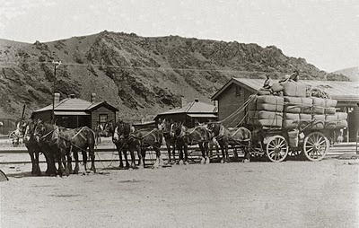 Wool bales from the Criffel run arriving at the Cromwell Station, circa mid-1920's.