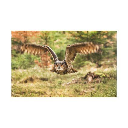 Eagle Owl Canvas Print - decor gifts diy home & living cyo giftidea