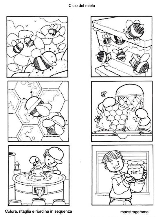 http://www.maestragemma.com/images/sequenza11.jpg