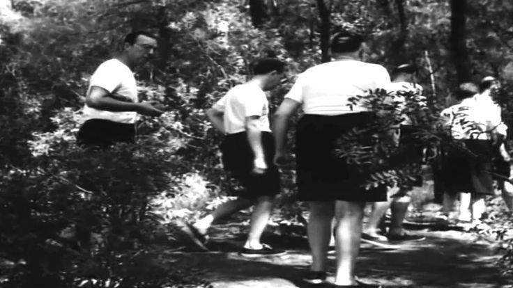 Ελληνική ταινία - Η Χιονάτη και τα 7 γεροντοπαλλήκαρα (1960)