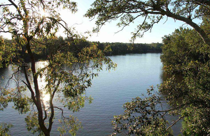 Cattai River lookout, Cattai National Park. Photo: John Yurasek
