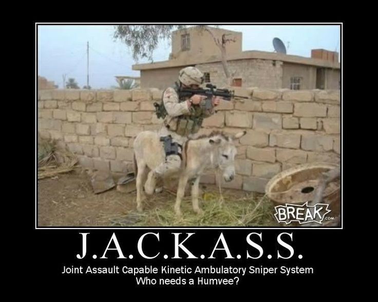 Tactical, little bastard