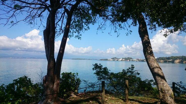 Pointe a Pitre, Guadalupe. Antillas francesas
