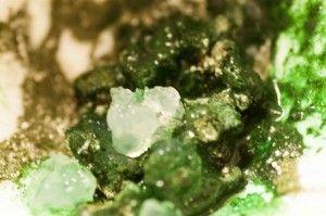 Algi morskie – kryształy japońskie – przepisy na kosmetyki