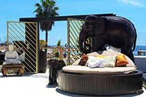 Marbella Beach Club with pool, Bar and Restaurant