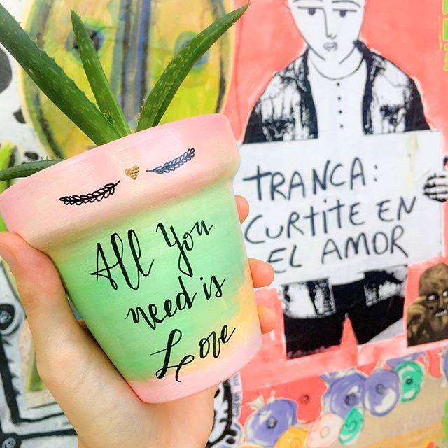 Tranca, love is all you need😍  Maceta $150 Maceta + suculenta $250  Consultas por inbox - CABA  #Succulove #succulent #succulentsofinstagram #succulentcity #CactusLove #cactus #CactusLover  #cactusofinstagram #cactusclub #cactusobsession #succulentobsession #allyouneedislove #alaventa