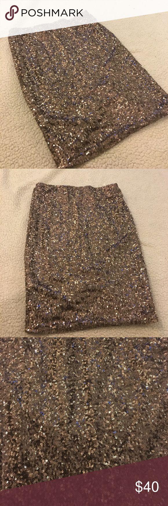 Sequin Skirt Beautifully sequined skirt! Alythea Skirts Mini