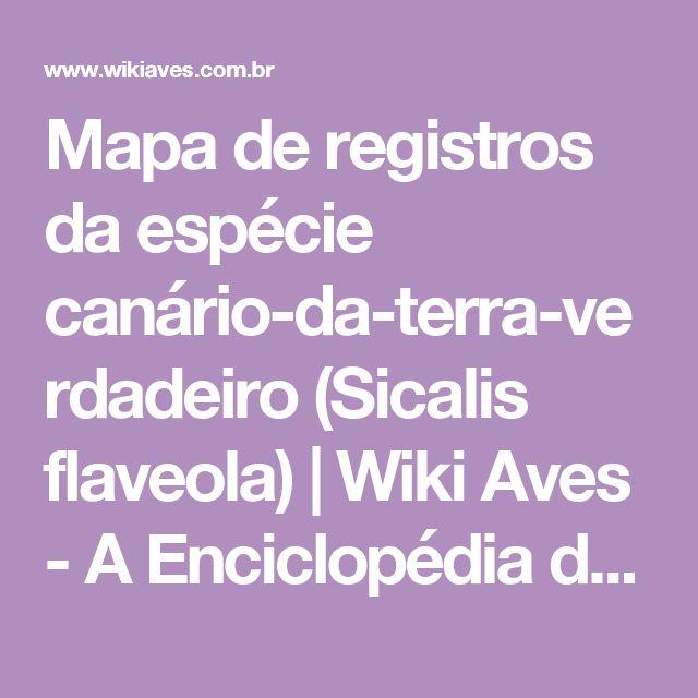 Mapa de registros da espécie  canário-da-terra-verdadeiro (Sicalis flaveola) | Wiki Aves - A Enciclopédia das Aves do Brasil