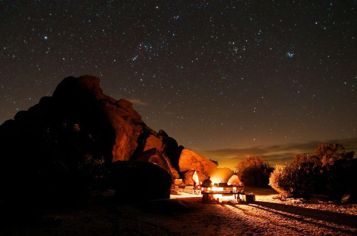 Camping At The Joshua Tree ~ Joshua Bury