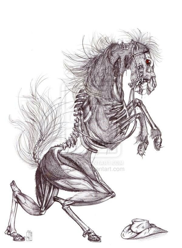 Horse Tattoo Skeleton Tattoos And Ideas Pinterest Skeletons