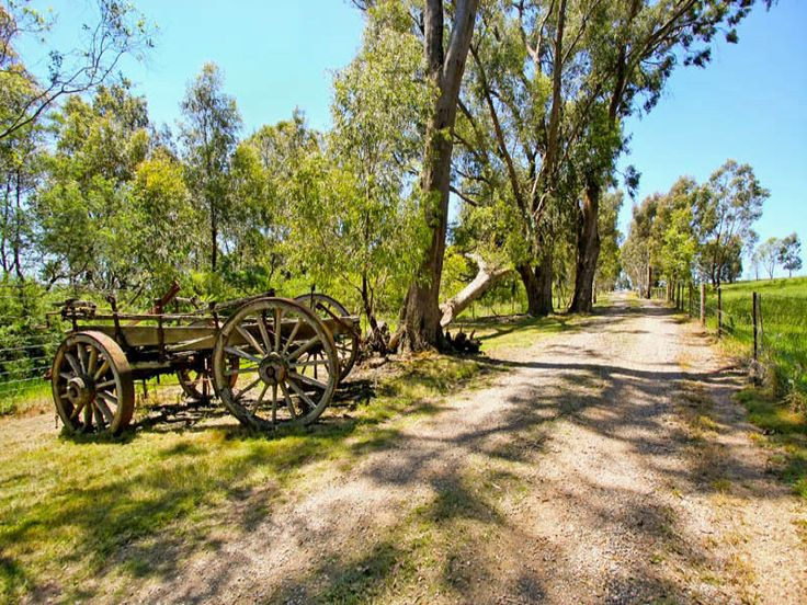 We love rural driveways in the Yarra Valley! Have a look at this old timer in Glenburn :)