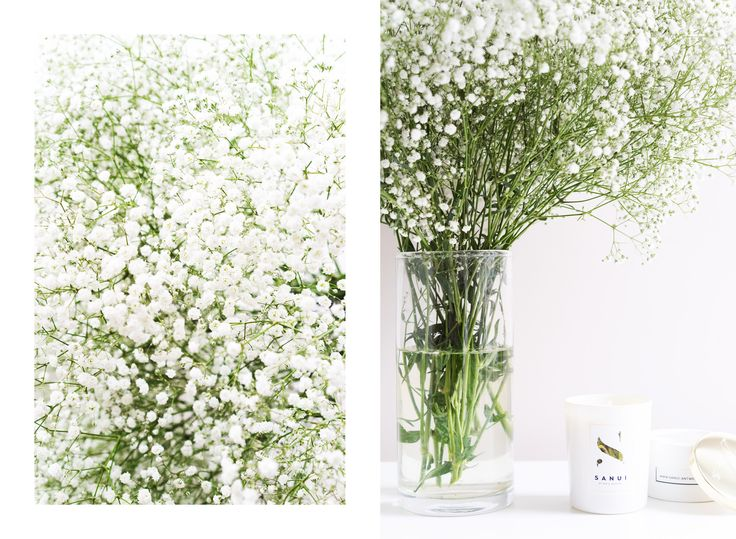 Paris In Four Months Weekend Reading Scented Candles Babys Breath