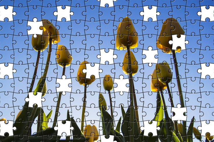 Free Jigsaw Puzzle Online - Tulips