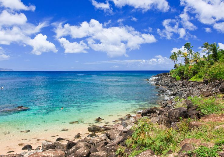 Hawaii Snorkeling in Maui, Oahu: North Shore