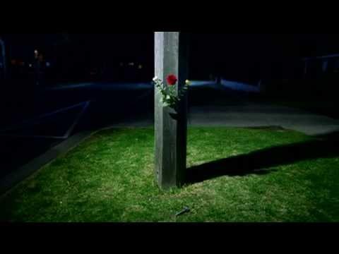 'Death Blooms' - 2008 MAFMAD winner