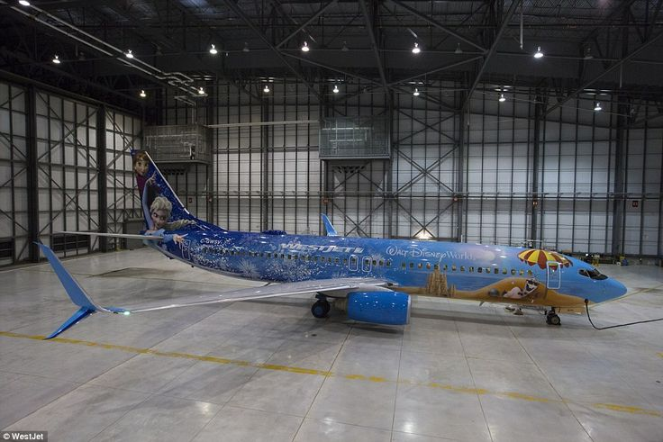 The aircraft - which took 600 litres of paint to complete - will fly the Boeing 737's route, not just to Orlando