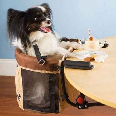 For the pup who engages in proper dining etiquette, there's a high chair.