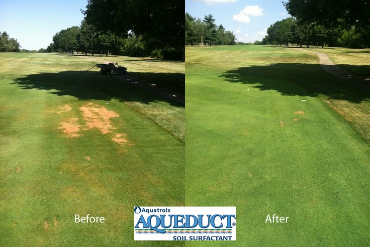 These pics come to us from a course in Ohio. Aqueduct all but eliminated Localized Dry Spots in under two weeks!