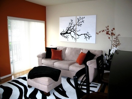 17 Best Images About Zebra Living Room On Pinterest