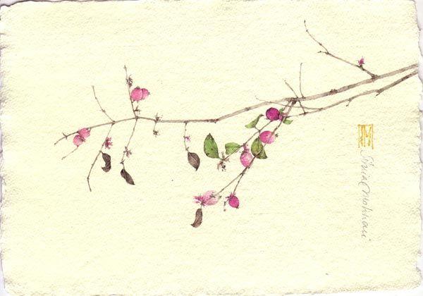 SIMPHORICARPOS#1. acquerello su carta a mano, 14x21 cm circa, anno 2010