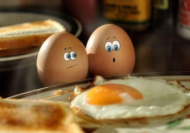 ..: Poor Eggs, Funny Things, Funny Pictures, Funny Eggs, Breakfast, Funny Stuff, Funny Photos, So Funny, Smile