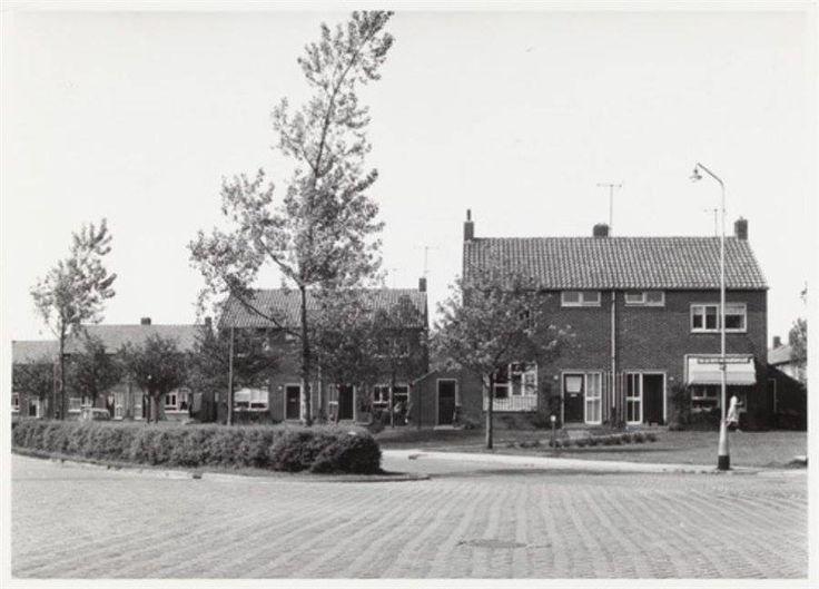 Duyn van Maasdamlaan 1964