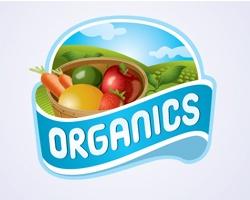 25 Delicious Colorful Fruit Logos – Attractive Collection: Organics Logo, Graphic Design, Organic Farm Logo, Logo Design, Organic Logos, Vector Graphics, Logos Design, Logo Vector