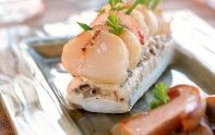 Découvrez cette recette de Saint-Jacques aux bolets et au homard. Une recette légère et goûteuse !