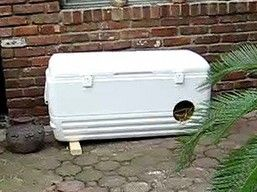 DIY: Warm Winter Cat Houses